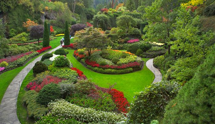 Best Organic Mulch On Earth Garden Mulch Sweet Peet
